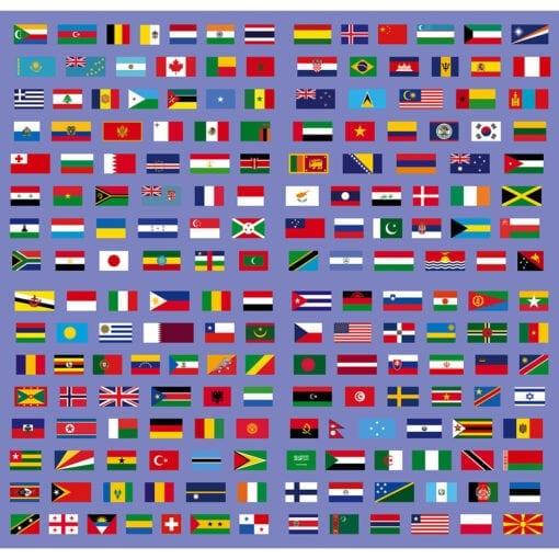 cherche et trouve drapeaux - janod