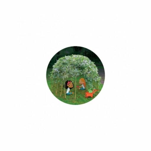 kit de plantation pour enfants - ma cabane en saules - will up